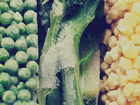 Why grocery prices can differ by neighbohood