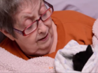 WATCH: Hospice patient handed basket of kittens