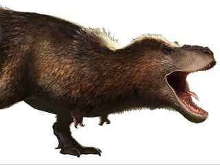 The T. rex is actually fuzzy, scaly and lippy