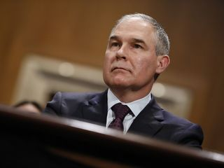 EPA head rejects ban on controversial pesticide