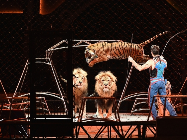 Ringling Bros. and Barnum and Bailey Circus has final show