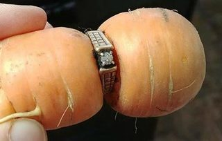 Ring lost 13 years ago is found around a carrot