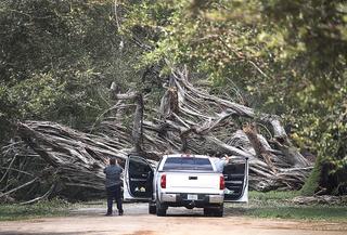 Photos: Hurricane Irma causes destruction