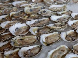 More acid oceans mean less shellfish