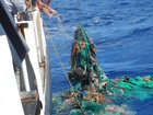 Pacific Garbage Patch 3 times the size of France
