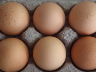Egg recall: Salmonella cases in 7 states