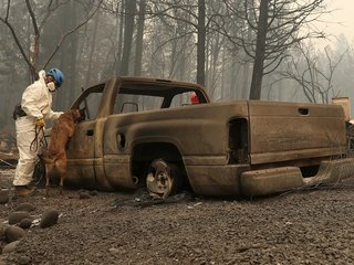 Searchers in California wildfire step up efforts