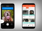 App helps reunite lost pets with owners